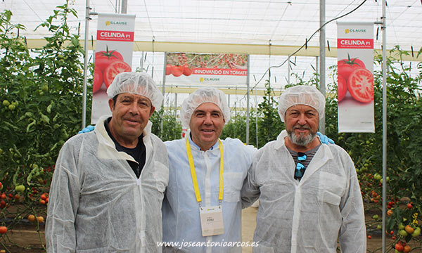Andrés Pérez, técnico de Clause, en las jornadas de tomate en El Alquián. /joseantonioarcos.es