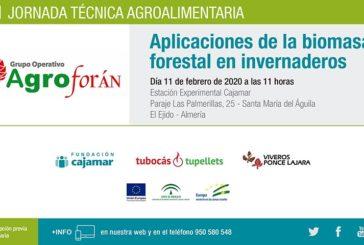 Día 11 de febrero. Aplicación de biomasa forestal en invernadero