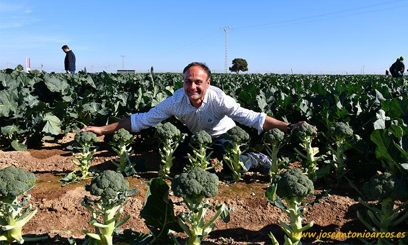 José Hernández, especialista de cultivo de brásicas de Rijk Zwaan. /joseantonioarcos.es