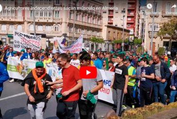 El vídeo de la manifa del 26F en Almería