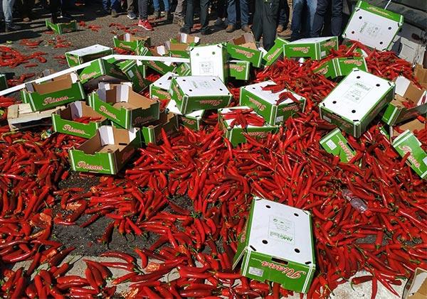 Los agricultores en Jaén queman cajas de hortalizas de un camión de Marruecos.