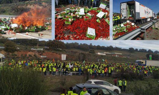 Los agricultores cortan la autovía en Jaén y vuelcan un camión de Marruecos. /joseantonioarcos.es