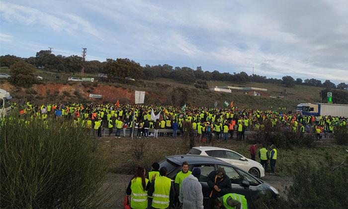 Los olivareros de Jaén cortan la autovía A-4 por los bajos precios del olivar. /joseantonioarcos.es