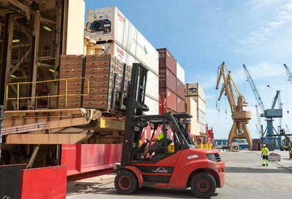12 millones de toneladas de frutas y hortalizas movidas en los puertos