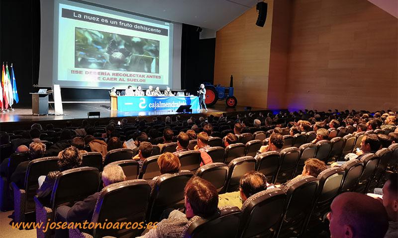El nogal ha sido el cultivo invitado en Agroexpo 2020 (Don Benito, Extremadura). /joseantonioarcos.es