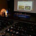 El nogal se configura como cultivo de futuro en España