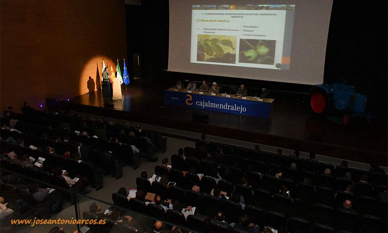El nogal es el cultivo invitado en Agroexpo 2020 en Don Benito, Badajoz. /joseantonioarcos.es