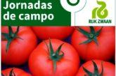 Días 25 y 26 de febrero. Jornadas de tomate de Rijk Zwaan