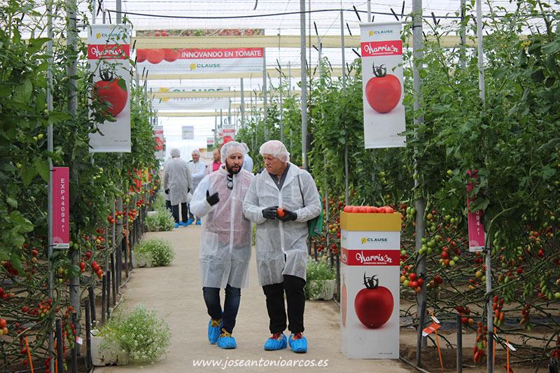 Jornadas de tomate de HM Clause en Almería. /joseantonioarcos.es