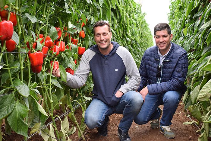 Juanfran Díaz y Cristóbal Ramos, agricultores de El Ejido en las jornadas de pimiento de Ramiro Arnedo. /joseantonioarcos.es
