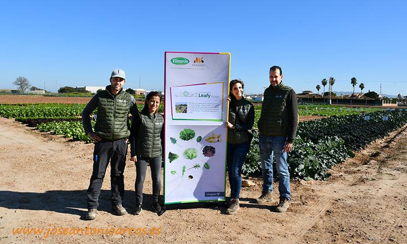 Experience the Leafy choice. /joseantonioarcos.es