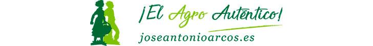 Divisor post Nuevo logo