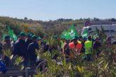 Los freseros cortan la autovía que conecta con Portugal