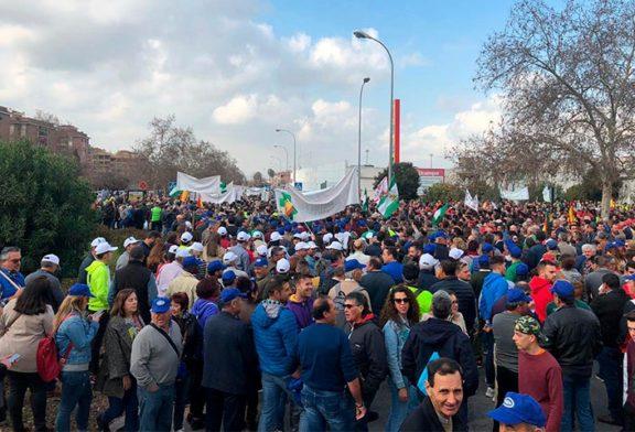 Granada rompe la hemeroteca en su protesta más multitudinaria