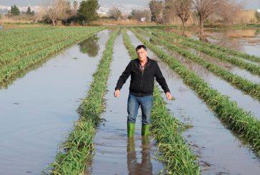 Los agricultores catalanes del Baix Llobregat lanzan un SOS
