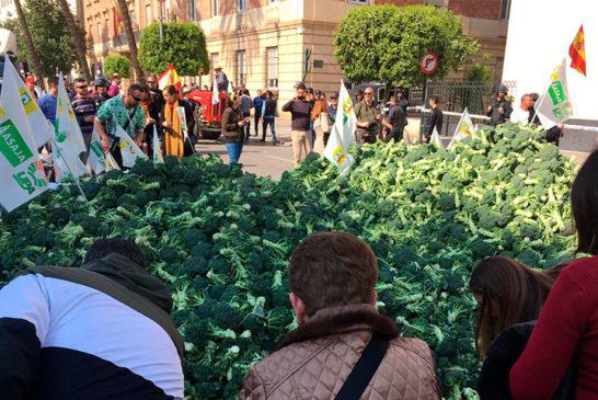 La huerta de Murcia despierta y toma la calle