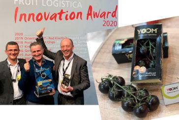 Yoom, el tomate ganador de Fruit Logística 2020
