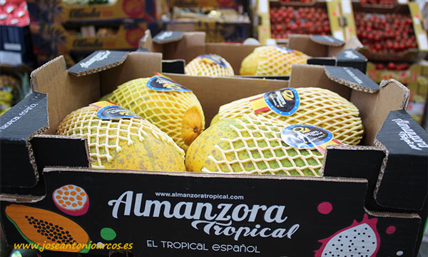 Papaya almeriense en Mercabarna. /joseantonioarcos.es