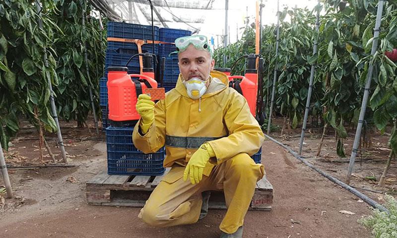 David Molina, en su invernadero de Almería. /joseantonioarcos.es