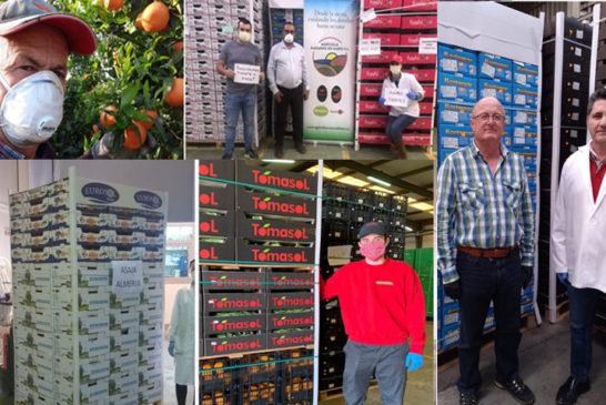 Agricultores de Almería donan verdura y fruta a los sanitarios del Ifema