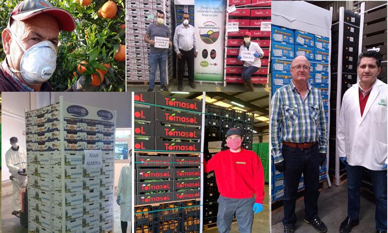 Agricultores de almería donan frutas y hortalizas al personal sanitario que está en el Ifema-joseantonioarcos.es