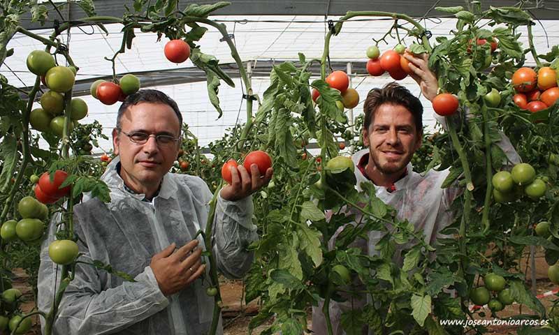 Antonio López, breeder de Axia Semillas, y Rubén Vicente, desarrollo. /joseantonioarcos.es