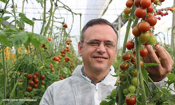Antonio Montoro, breeder de tomate, con Black Panther. /joseantonioarcos.es