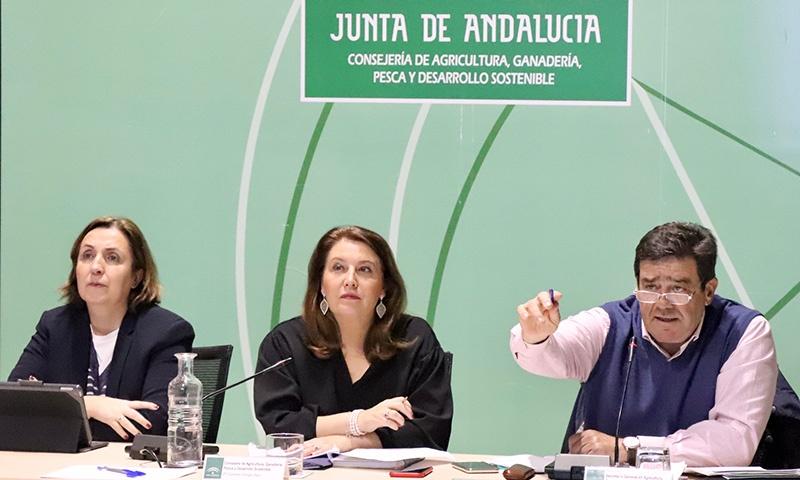 Carmen Crespo, consejera de Agricultura de la Junta de Andalucía. /joseantonioarcos.es