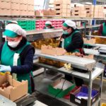 Cooperativas y subastas implantan protocolos frente al coronavirus