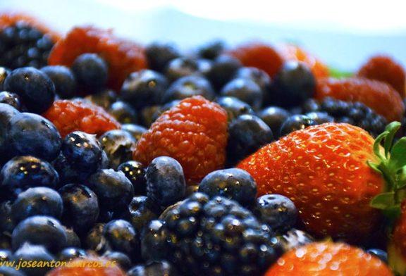 Ecoculture fomenta las propiedades del consumo de berries