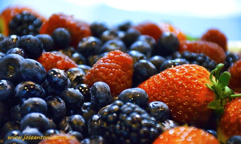 Ecoculture fomenta el consumo de frutos rojos al ser estos una gran fuente de antioxidantes y vitamina C-joseantonioarcos.es