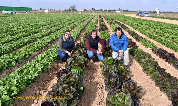Lidia Alcubierre, junior breeder; Jesús Bayano, desarrollo de cultivos de hoja; y Lorenzo Castillo, breeder de lechuga. /joseantonioarcos.es