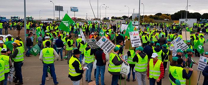#AgricultoresAlLímite en Huelva protestan por los bajos precios. /joseantonioarcos.es