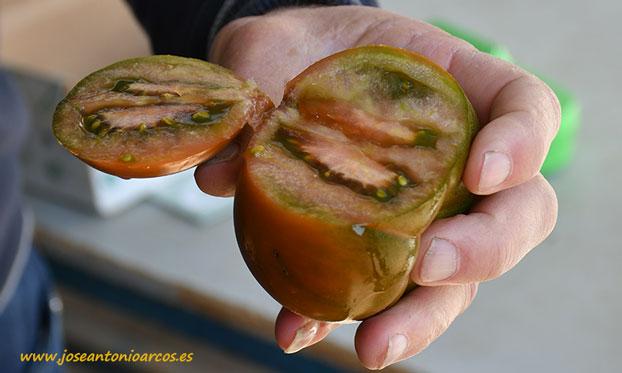Tomate Mulato Star de Agrinature. /joseantonioarcos.es