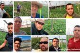 Los agricultores se organizan para no vender sandías por debajo de 65 céntimos