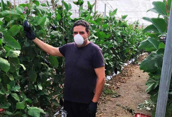 Reflexiones de un agricultor de El Ejido en época de pandemia