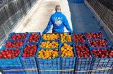 Los agricultores no quieren con el coronavirus productos de terceros