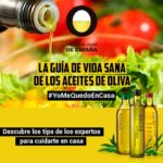 La guía de vida sana de los aceites de oliva