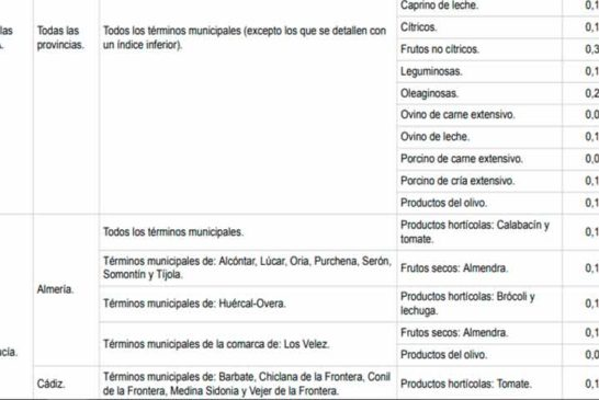 En Almería solo tomate y calabacín tendrán rebaja fiscal