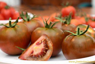 #QuédateEnCasa con tomate Kumato