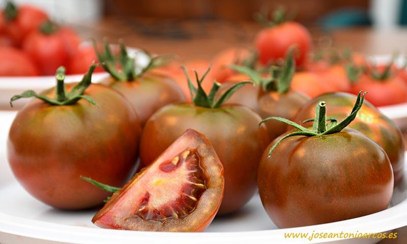Tomate Kumato de Syngenta-joseantonioarcos.es