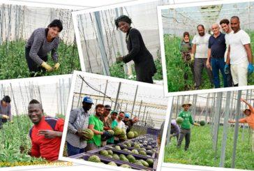 Declaración conjunta por la dignidad y defensa del sector agrícola
