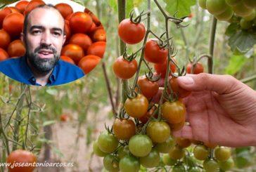 Karelya saca al cherry del commodity y le da valor