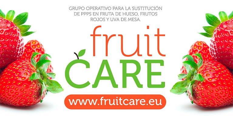 Proyecto de innovación FruitCare-joseantonioarcos.es