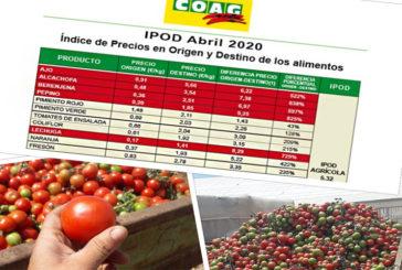El tomate multiplica su precio tres veces del campo a la mesa durante el Covid