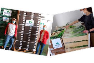 Seipasa dona fresas y verduras a Bancos de Alimentos de Huelva y Córdoba
