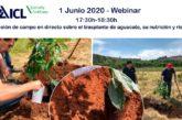 Día 1 de junio. Sesión de campo sobre trasplante de aguacate, nutrición y riego