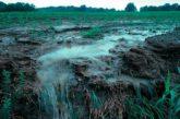 Nuevas App para evitar la degradación y pérdida de suelos agrícolas