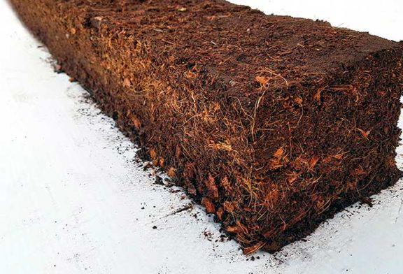 Projar desarrolla mezclas de fibra de coco para mejorar suelos agrícolas